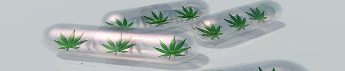 cannabis-landing.jpg